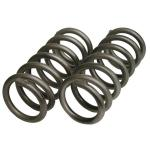 63-71 FRONT COIL SPRINGS (F41) (PR)